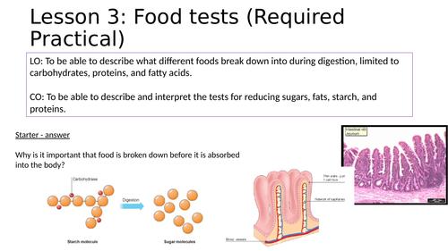 KS4 Food tests practical lesson