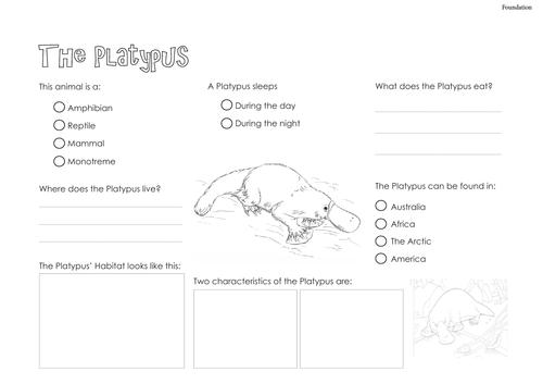 Platypus - Information Text
