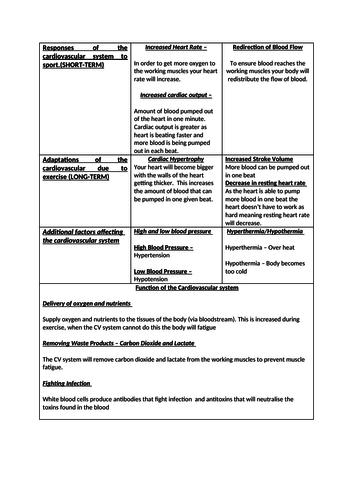 BTEC SPORT Unit 1 EXAM REVISION RESOURCE LEVEL 3