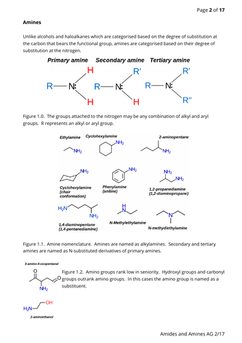 Amines and amides notes