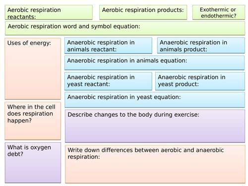 B9 Respiration Summary