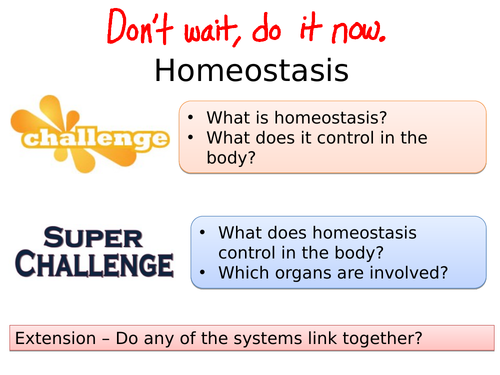 B10 Principles of Homeostasis