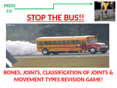 STOP THE BUS! GCSE PE revision starter/plenary on bones, joints and movement types.