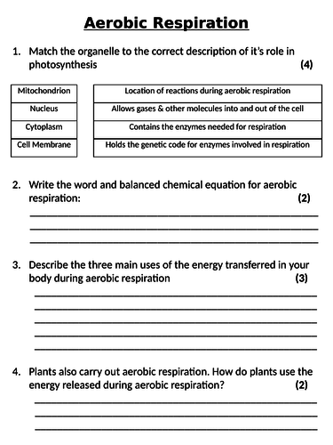 NEW AQA GCSE Trilogy (2016) Biology - Aerobic Respiration Homework