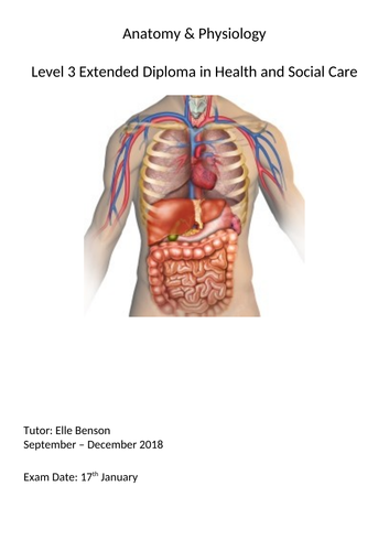 Health and social care. Level 3 Anatomy and physiology unit 3 ...