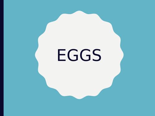 Eggs Year 7 Food