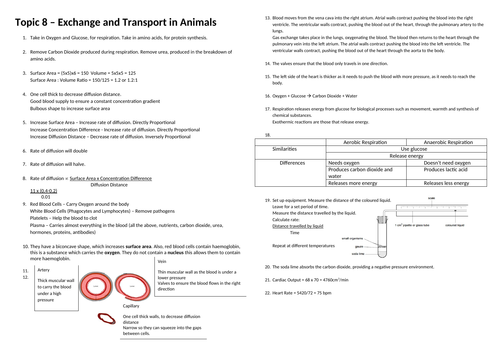 Biology edexcel CB8 Transport in animals revision overview and cheat sheet