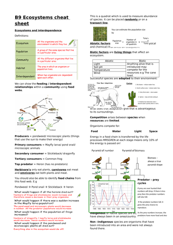 Biology edexcel CB9 Ecosystems revision overview and cheat sheet