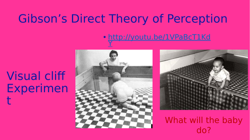 Gibson's Direct Theory of Perception