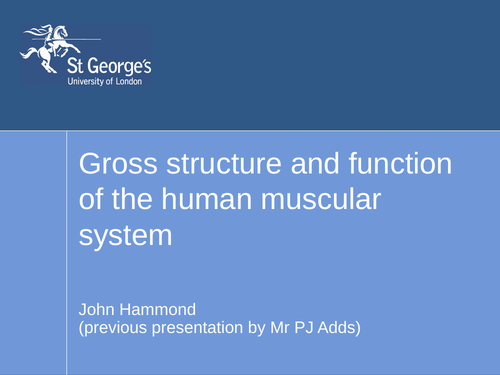 Gross structure, function of human muscle