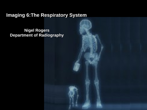 Respiratory System ( anatomy included)