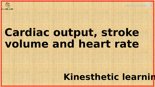 Bundle of resources for relationship between Heart Rate, Stroke Volume and Cardiac Output