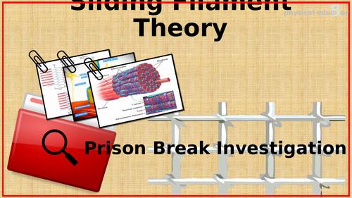Sliding Filament Theory Prison Break Activity