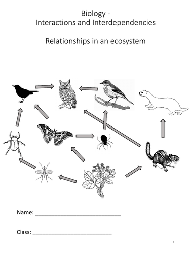 Biology - Relationships in an ecosystem - Complete Science Key Stage 3 Unit