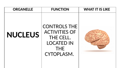 Quiz Quiz Trade for Cell Organelles GCSE Biology