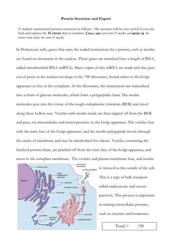 Protein Export and Secretion Worksheet