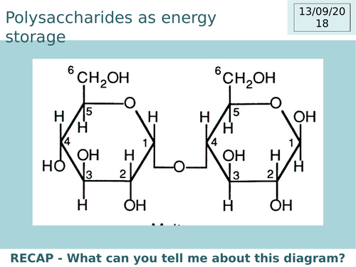 A Level Biology Polysaccharides as energy molecules Complete lesson