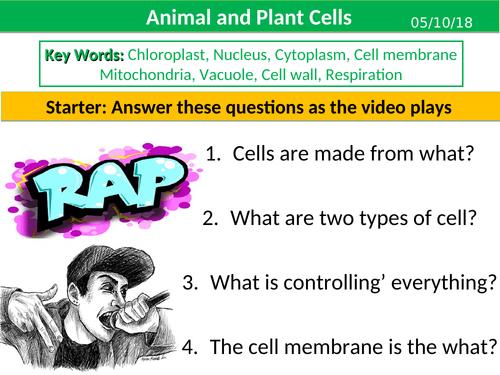 Plant and Animal Cells (KS3)