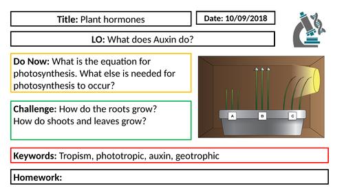 AQA GCSE Biology New Specification - B5 Plant Hormones
