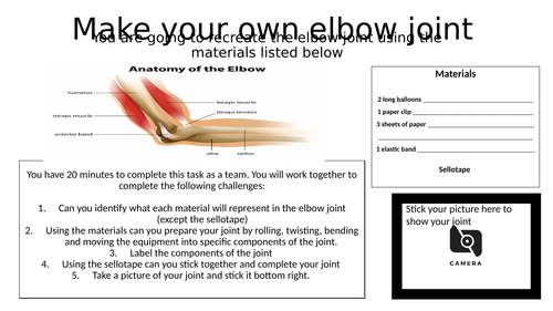Make your own elbow joint - Muscular Skeletal System