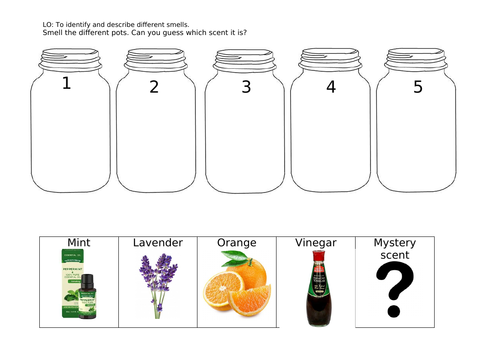 Exploring senses - practical scent test recording page