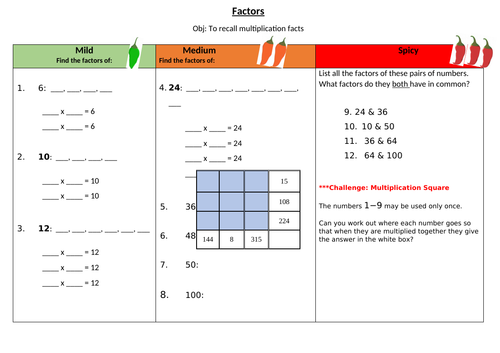 Factors Differentiated Maths Worksheet