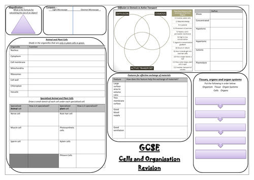 AQA NEW SPEC GCSE Biology (9-1) REVISION MINDMAPS- Cells and Organisation