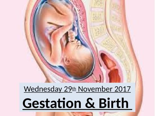 Gestation & Birth