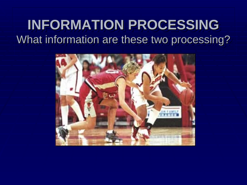 Information Processing in Sport power point