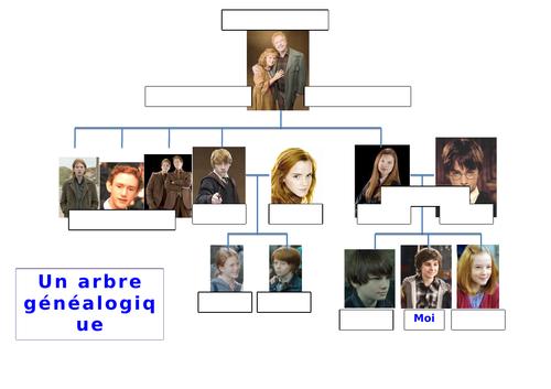 Family Tree Template - Harry Potter