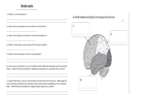 Edexcel 9-1 Psyhcology Topic 4 Brain and Neuropsychology- Lesson 1 Brain quiz and powerpoint