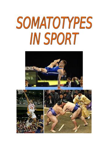 Somatotypes information and work sheet/tasks
