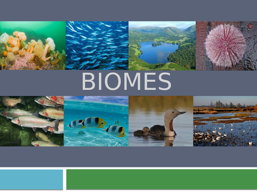 Biodiversity, biomes and conservation - 25 resources