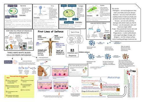 AQA GCSE Biology (9-1) B3 Triple Science Revision Summary Sheets
