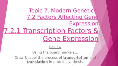 Transcription Factors & Gene Sequencing