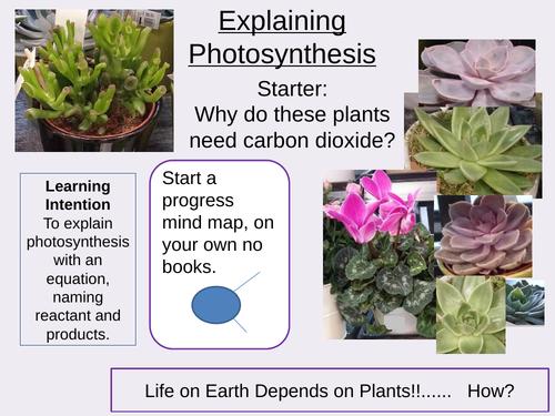 Explaining Photosynthesis Outstanding Lesson AQA GCSE Biology New 9-1 Bioenergetics