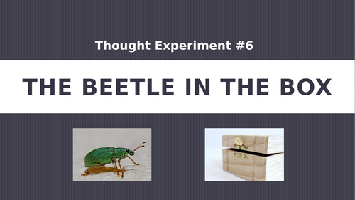 Thought Experiment #6: The Beetle in the Box