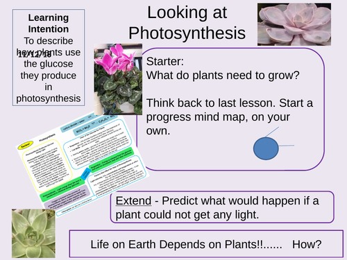 Photosynthesis and the Uses of Glucose Outstanding Lesson AQA GCSE Biology New 9-1 Bioenergetics