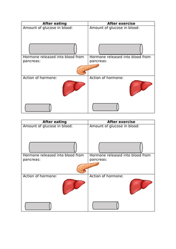GCSE Control of blood glucose