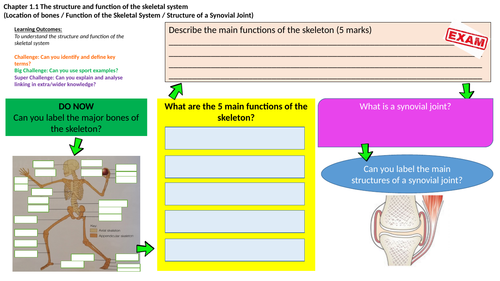 OCR GCSE PE (9-1) Flipped Learning Mats - Section 1 Applied Anatomy & Physiology