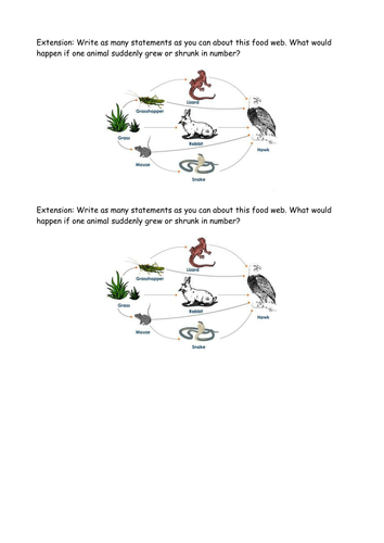 Food Chains SCIENCE KS1 Full lesson pack