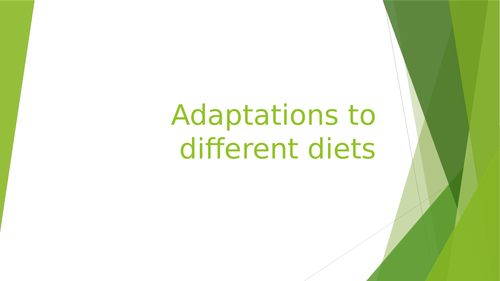 Adaptations to nutrition WJEC