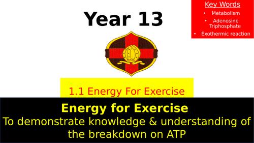 OCR A Level PE- Energy Systems