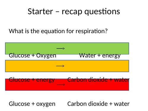 Anaerobic Respiration (KS3/4)