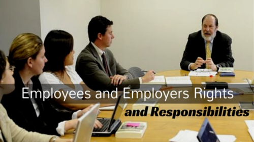 Representative organisations (Employee's Rights and Responsibilities unit)