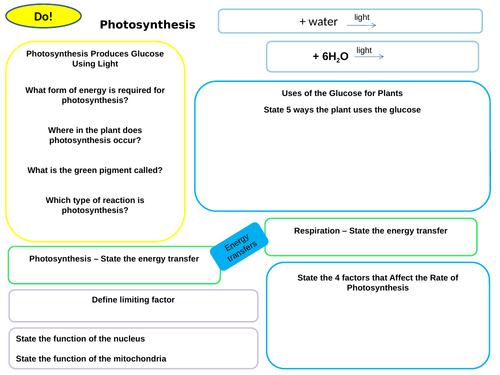 Worksheets /Work mats & Information Mats for Bioenergetics - Photosynthesis, Respiration etc AQA 9-1