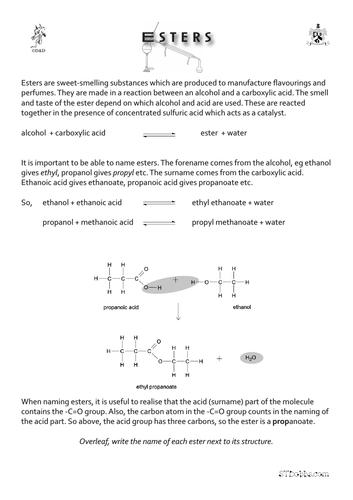 Esters worksheet