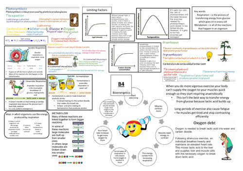 AQA GCSE Biology (9-1) B4 Double and Triple Science Revision Summary Sheets