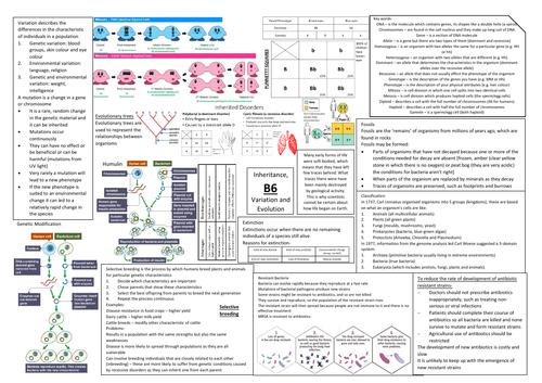 AQA GCSE Biology (9-1) B6 Double Science Revision Summary Sheets