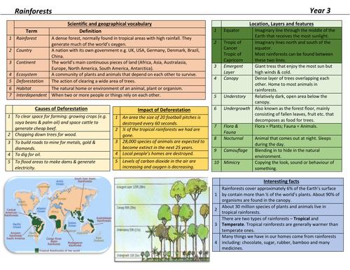 Rainforests Knowledge Organiser